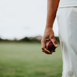 why play cricket in fear